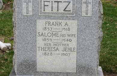 FITZ, SALOME - Erie County, Ohio | SALOME FITZ - Ohio Gravestone Photos