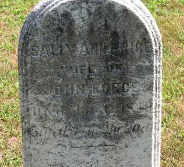 PRICE FORCE, SALLY ANN - Erie County, Ohio | SALLY ANN PRICE FORCE - Ohio Gravestone Photos