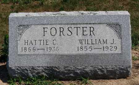 FORSTER, WILLIAM J. - Erie County, Ohio | WILLIAM J. FORSTER - Ohio Gravestone Photos