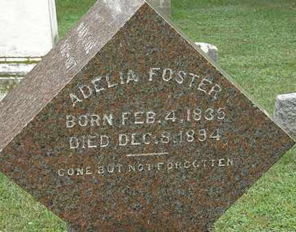 FOSTER, ADELIA - Erie County, Ohio | ADELIA FOSTER - Ohio Gravestone Photos