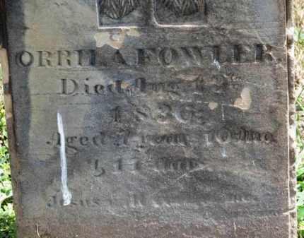 FOWLER, ORRILA - Erie County, Ohio   ORRILA FOWLER - Ohio Gravestone Photos