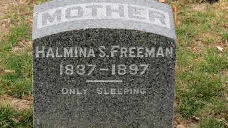 FREEMAN, HALMINA S. - Erie County, Ohio | HALMINA S. FREEMAN - Ohio Gravestone Photos