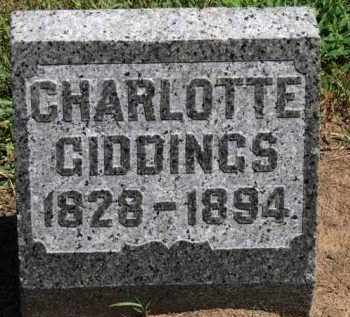GIDDINGS, CHARLOTTE - Erie County, Ohio | CHARLOTTE GIDDINGS - Ohio Gravestone Photos
