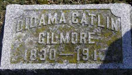 GILMORE, DIDAMA CATLIN - Erie County, Ohio | DIDAMA CATLIN GILMORE - Ohio Gravestone Photos