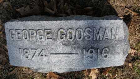 GOOSMAN, GEORGE - Erie County, Ohio | GEORGE GOOSMAN - Ohio Gravestone Photos