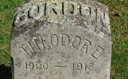 GORDON, THEODORE - Erie County, Ohio | THEODORE GORDON - Ohio Gravestone Photos