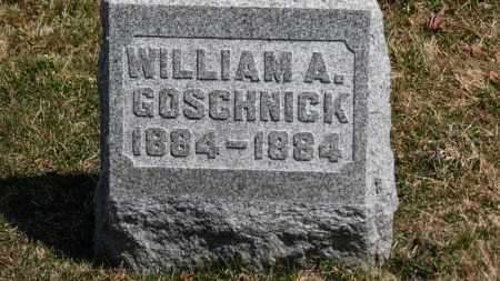 GOSCHNICK, WILLIAM A. - Erie County, Ohio | WILLIAM A. GOSCHNICK - Ohio Gravestone Photos