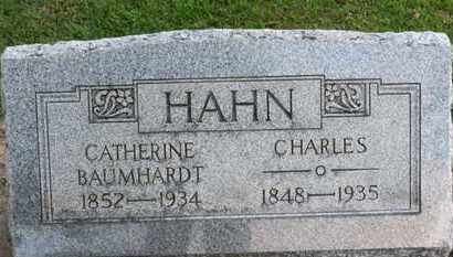 BAUMHARDT HAHN, CATHERINE - Erie County, Ohio | CATHERINE BAUMHARDT HAHN - Ohio Gravestone Photos
