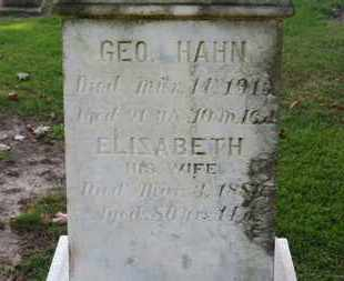 HAHN, ELISABETH - Erie County, Ohio | ELISABETH HAHN - Ohio Gravestone Photos
