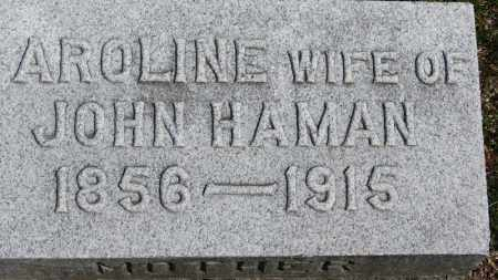 HAMAN, JOHN - Erie County, Ohio | JOHN HAMAN - Ohio Gravestone Photos