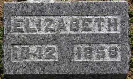 HAMILTON, ELIZABETH - Erie County, Ohio | ELIZABETH HAMILTON - Ohio Gravestone Photos
