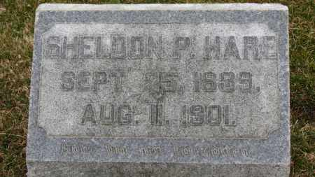HARE, SHELDON P. - Erie County, Ohio | SHELDON P. HARE - Ohio Gravestone Photos