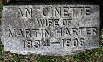 HARTER, ANTOINETTE - Erie County, Ohio | ANTOINETTE HARTER - Ohio Gravestone Photos