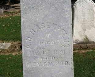 HASENPFLUG, A.H. - Erie County, Ohio | A.H. HASENPFLUG - Ohio Gravestone Photos