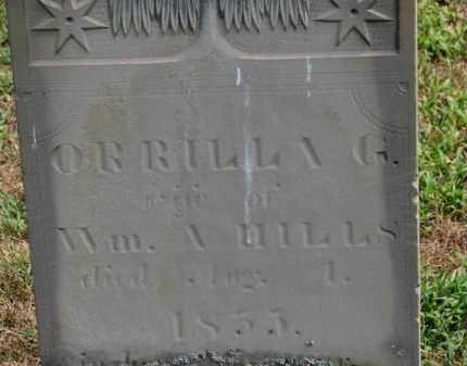 HILLS, ORRILLA - Erie County, Ohio | ORRILLA HILLS - Ohio Gravestone Photos