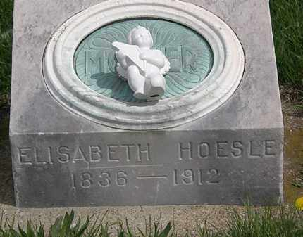 HOESLE, ELISABETH - Erie County, Ohio | ELISABETH HOESLE - Ohio Gravestone Photos