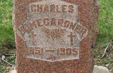 HOMEGARDNER, CHARLES - Erie County, Ohio | CHARLES HOMEGARDNER - Ohio Gravestone Photos