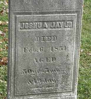 JAY JR., JOSHUA - Erie County, Ohio | JOSHUA JAY JR. - Ohio Gravestone Photos