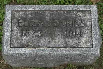 JENKINS, ELIZA - Erie County, Ohio | ELIZA JENKINS - Ohio Gravestone Photos