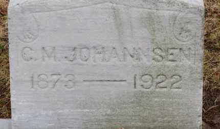 JOHANNSEN, C.M. - Erie County, Ohio | C.M. JOHANNSEN - Ohio Gravestone Photos