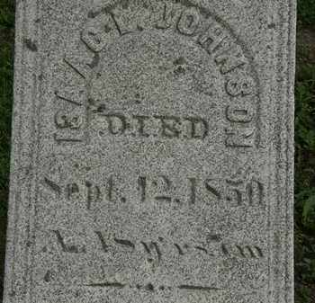 JOHNSON, ISAAC I. - Erie County, Ohio | ISAAC I. JOHNSON - Ohio Gravestone Photos