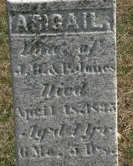 JONES, ABIGAIL - Erie County, Ohio | ABIGAIL JONES - Ohio Gravestone Photos