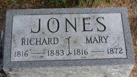 JONES, RICHARD - Erie County, Ohio | RICHARD JONES - Ohio Gravestone Photos