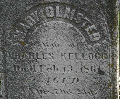 KELLOGG, MARY - Erie County, Ohio | MARY KELLOGG - Ohio Gravestone Photos