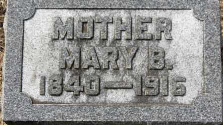 LEMMON, MARY B. - Erie County, Ohio | MARY B. LEMMON - Ohio Gravestone Photos