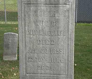LEONARD, CALVIN - Erie County, Ohio | CALVIN LEONARD - Ohio Gravestone Photos