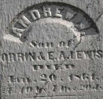 LEWIS, ANDREW W. - Erie County, Ohio   ANDREW W. LEWIS - Ohio Gravestone Photos