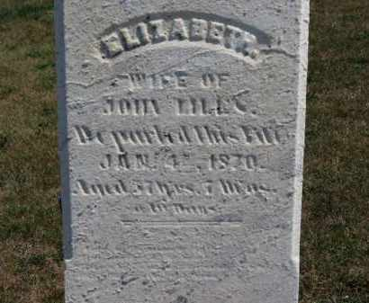 LILES, ELIZABETH - Erie County, Ohio | ELIZABETH LILES - Ohio Gravestone Photos