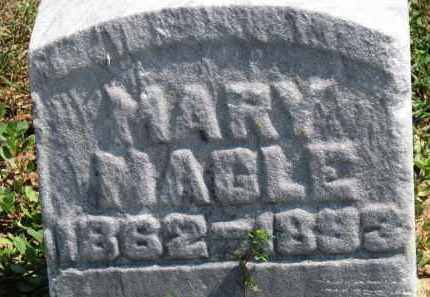 MAGLE, MARY - Erie County, Ohio | MARY MAGLE - Ohio Gravestone Photos