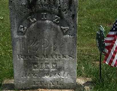 MARKS, ELIZA - Erie County, Ohio | ELIZA MARKS - Ohio Gravestone Photos