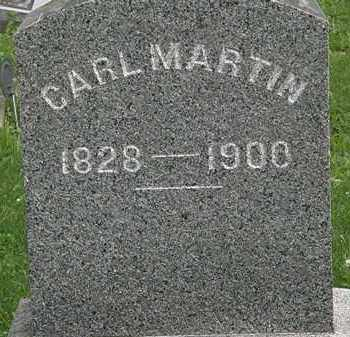 MARTIN, CARL - Erie County, Ohio | CARL MARTIN - Ohio Gravestone Photos