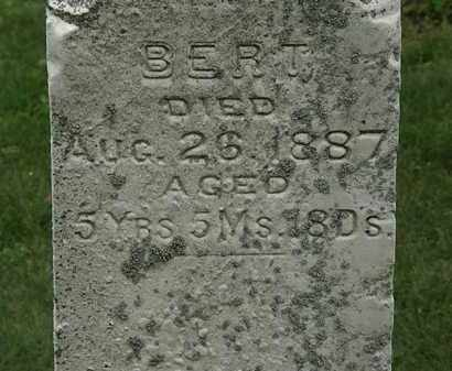 MASON, BERT - Erie County, Ohio | BERT MASON - Ohio Gravestone Photos