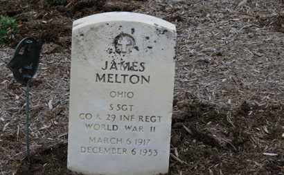 MELTON, JAMES - Erie County, Ohio | JAMES MELTON - Ohio Gravestone Photos