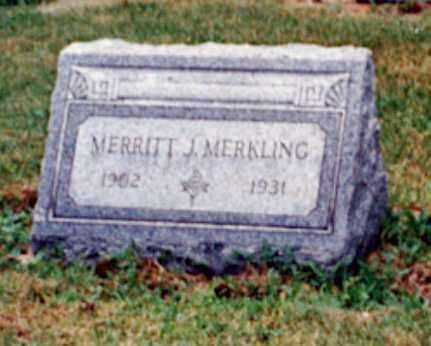 MERKLING, MERRITT J - Erie County, Ohio | MERRITT J MERKLING - Ohio Gravestone Photos
