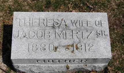 MERTZ, THERESA - Erie County, Ohio | THERESA MERTZ - Ohio Gravestone Photos