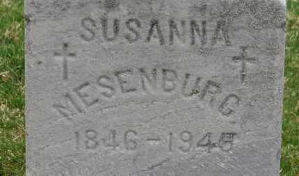 MESENBURG, SUSANA - Erie County, Ohio | SUSANA MESENBURG - Ohio Gravestone Photos