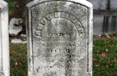 MILLER, AMOS - Erie County, Ohio   AMOS MILLER - Ohio Gravestone Photos
