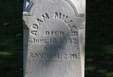 MILLER, ADAM - Erie County, Ohio | ADAM MILLER - Ohio Gravestone Photos