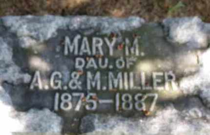 MILLER, MARY M. - Erie County, Ohio | MARY M. MILLER - Ohio Gravestone Photos