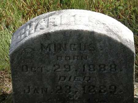 MINGUS, CHARLES - Erie County, Ohio | CHARLES MINGUS - Ohio Gravestone Photos