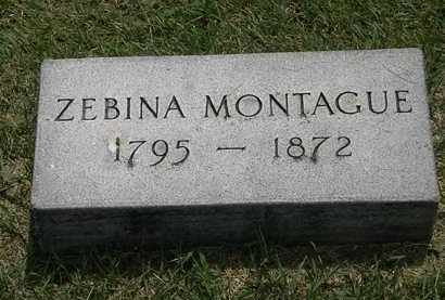 MONTAGUE, ZEBINA - Erie County, Ohio | ZEBINA MONTAGUE - Ohio Gravestone Photos