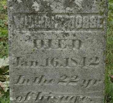 MORSE, WILLIAM - Erie County, Ohio | WILLIAM MORSE - Ohio Gravestone Photos