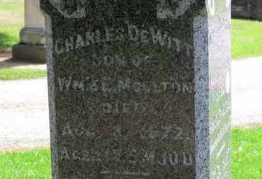 MOULTON, CHARLES DEWITT - Erie County, Ohio | CHARLES DEWITT MOULTON - Ohio Gravestone Photos