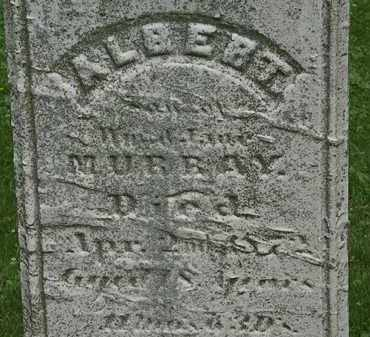 MURRAY, JANE - Erie County, Ohio | JANE MURRAY - Ohio Gravestone Photos