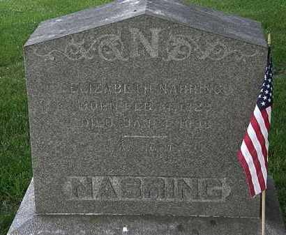 NABRING, ELIZABETH - Erie County, Ohio | ELIZABETH NABRING - Ohio Gravestone Photos