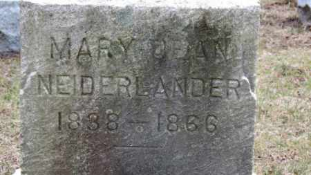 NEIDERLANDER, MARY - Erie County, Ohio | MARY NEIDERLANDER - Ohio Gravestone Photos
